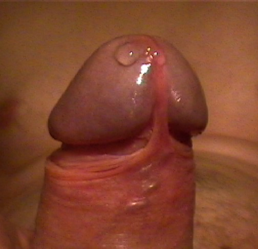 Free close pics dick cock penis glans, free blonde fucking pictures